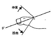 足の母指の屈曲(MTP)/伸展(MTP)の参考図