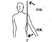 肩の外転/内転の参考図